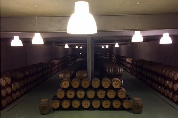 Barricas de vinho quinta do portal