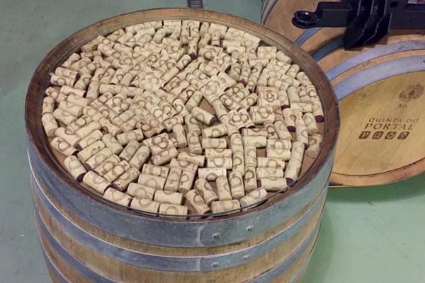 Barrica de vinhos