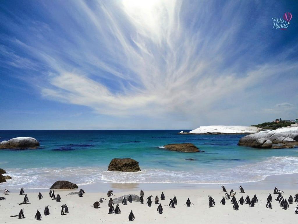 Boulders Beach Africa do Sul - imagem da praia cheia de pinguins