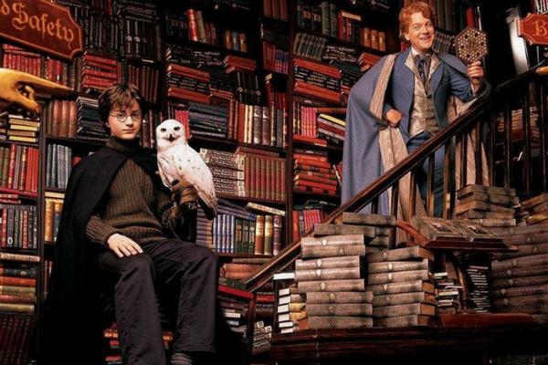 Harry Potter na Livraria Lello