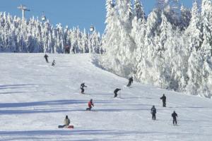 Ski no interior da Suécia