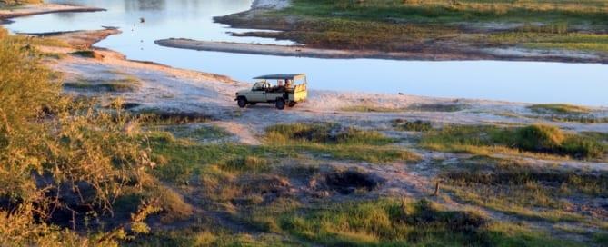 kruger park e os carros de safari