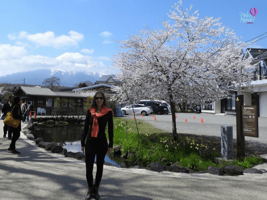 Oshino Hakkai Monte Fuji