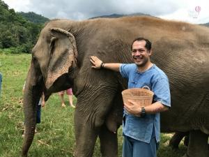 Fazenda dos elefantes - Tailândia